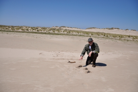 Dune ranger Villy Hansen explains Rabjerg Mile's geological origins [Simon Hooper]